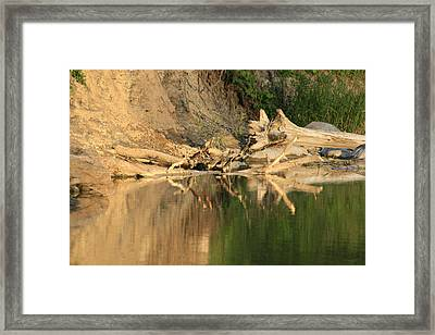 Rouge River Reflections One Framed Print by Alan Rutherford