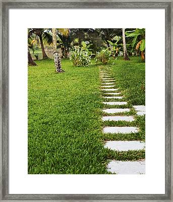 Route To Lake Framed Print by Kantilal Patel