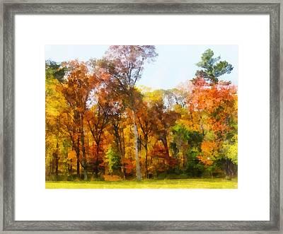 Row Of Autumn Trees Framed Print by Susan Savad