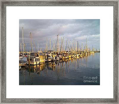 Row Of Boats Anchored In Marina Framed Print