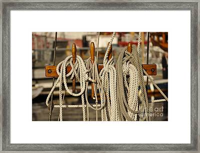 Row Of Ropes Framed Print by Camille Lyver