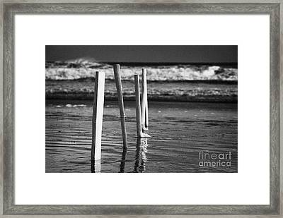 Row Of White Painted Beach Markers County Derry Londonderry Northern Ireland Uk Framed Print by Joe Fox