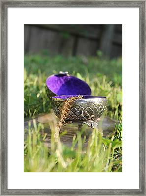 Royal Gifts Framed Print by Courtney Hancock