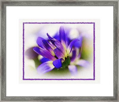 Royal Purple Framed Print by Judi Bagwell