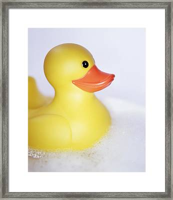 Rubber Duck Framed Print by Lawrence Lawry