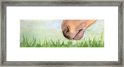 Rubbing Your Nose In It Framed Print by Annemeet Hasidi- van der Leij