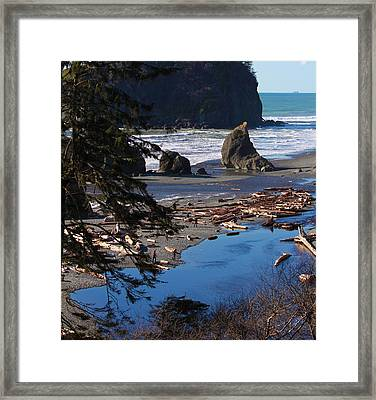 Framed Print featuring the photograph Ruby Beach IIi by Jeanette C Landstrom