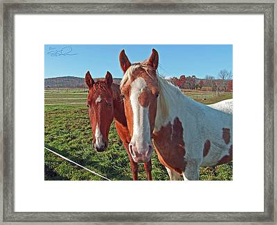 Ruff 'n Reddy Framed Print