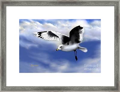 Ruffled Feathers Framed Print