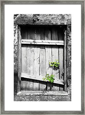 Ruins Framed Print by Gaspar Avila