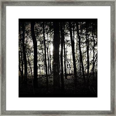 Run re-edit #woods #creepy #horror Framed Print