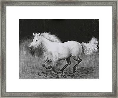Runaway Mollie Framed Print by Tomas OMaoldomhnaigh