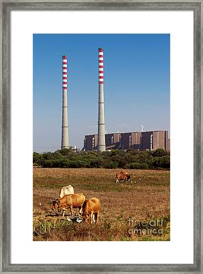 Rural Power Framed Print by Carlos Caetano