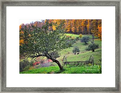 Rural Vermont Scenic-hayrake On The Pasture   Framed Print