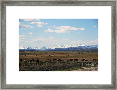 Rural Wyoming - On The Way To Jackson Hole Framed Print by Susanne Van Hulst