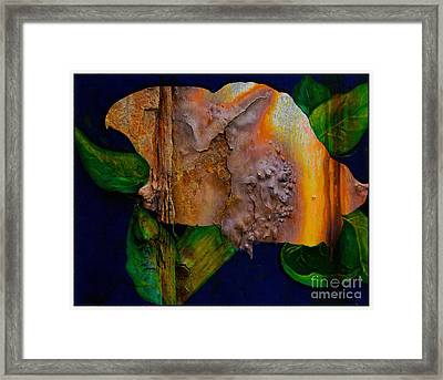 Rust Texture 3  Framed Print by Barbara Griffin