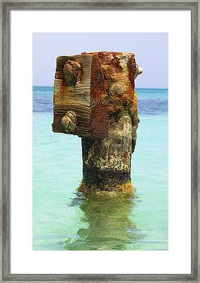 Rusted Dock Pier Of The Caribbean IIi Framed Print