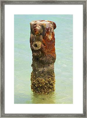 Rusted Dock Pier Of The Caribbean Vii Framed Print