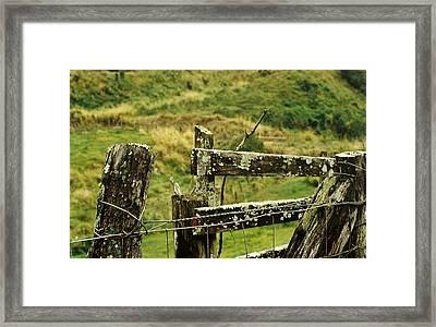 Rustic Fence Framed Print by Marilyn Wilson