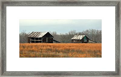 Rustic Illinois Framed Print by Marty Koch