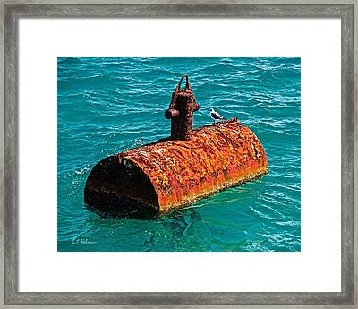 Rusty Bobber Framed Print by Christopher Holmes