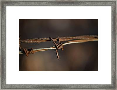 Rusty Electric Fence Wire Framed Print
