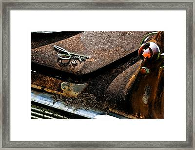 Rusty Impe Framed Print by DigiArt Diaries by Vicky B Fuller