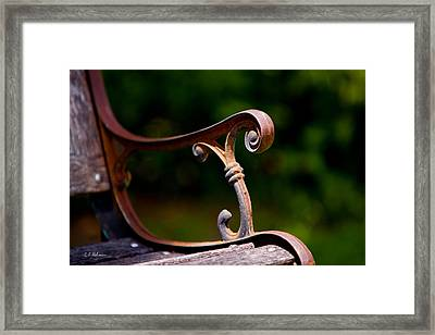 Rusty Rest Framed Print by Christopher Holmes
