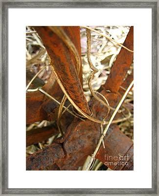 Rusty Spokes Framed Print by Joe Finney