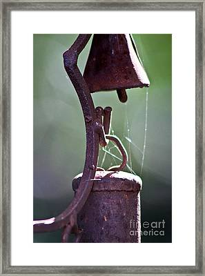Rusty Web Framed Print