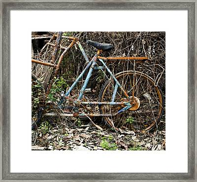Rusty Wheel Of Bicycle Framed Print by Chavalit Kamolthamanon