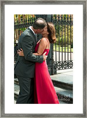S And D 065 Framed Print
