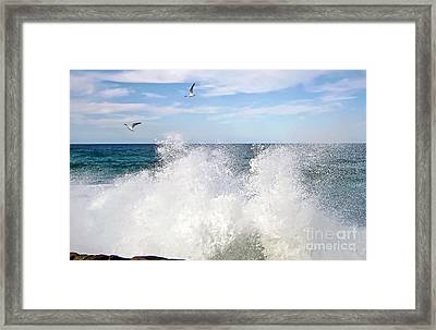 S P L A S H Framed Print by Kaye Menner