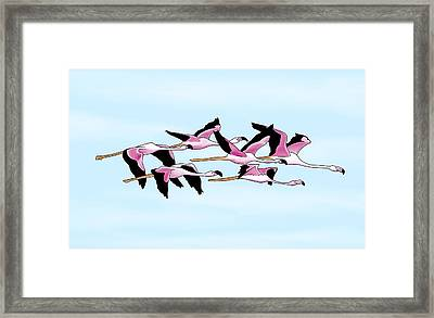 Sa Genti Arrubia  Flamingos Framed Print