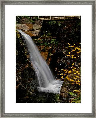 Sabbaday Falls In Nh Framed Print by Scott Moore