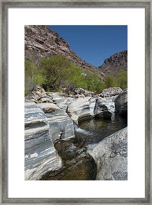 Sabino Canyon Framed Print
