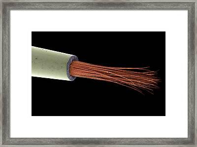 Sable Paintbrush Tip, Sem Framed Print by Steve Gschmeissner