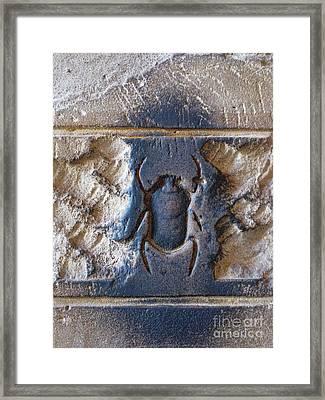 Sacred Scarab. Framed Print by JSM Fine Arts John Malone