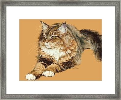 Sadie Framed Print by Laurie Musser