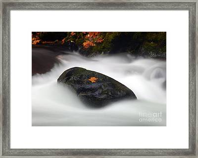Safe Haven Framed Print by Mike  Dawson
