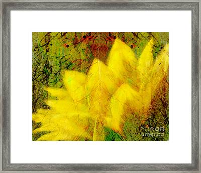 Saffron Dream Framed Print