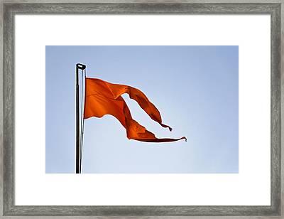 Saffron In The Breeze Framed Print