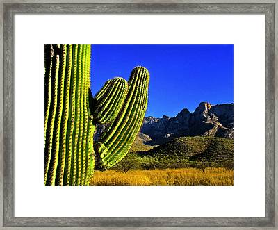 Framed Print featuring the photograph Saguaro And Catalina Mountains by Jim Moore
