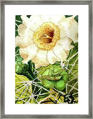 Saguaro Glory Framed Print