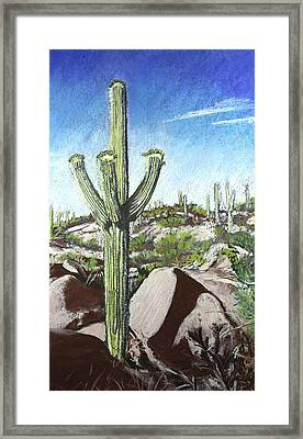 Saguaro National Park Framed Print