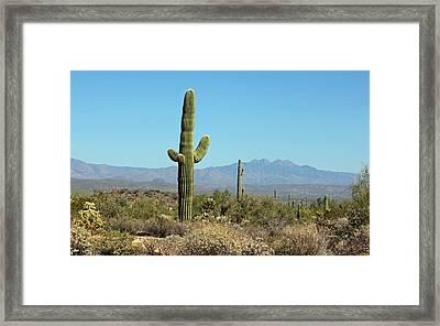 Saguaro Scenic II Framed Print