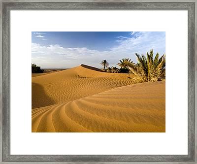 Sahara Desert At M'hamid, Morocco, Africa Framed Print