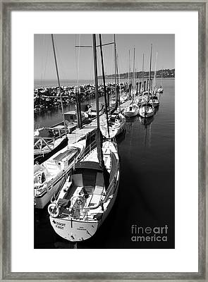 Sail Away Framed Print by Malu Couttolenc