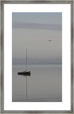 Sailboat And Seagull Framed Print by William Bartholomew