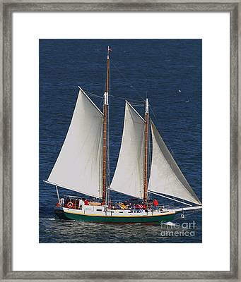 Sailboat In The San Francisco Bay . 7d7900 Framed Print by Wingsdomain Art and Photography